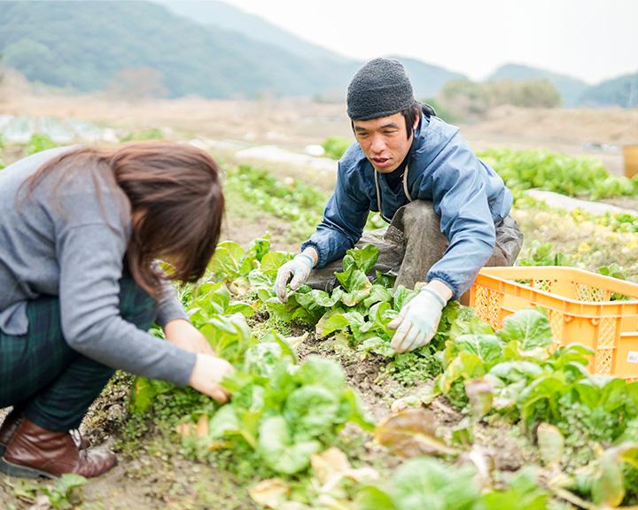移住者の声 小島末広さんの農場