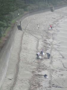 後ろの浜(雪浦海浜公園)のゴミも拾いました。