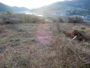 【ご報告】上の瀬耕作放棄地解消事業(長崎県小さな楽園事業)