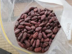 ソロモン諸島産有機カカオ豆が手に入りました。チョコレート一緒に作りませんか?